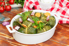 Collard Green Rolls Stockbilder