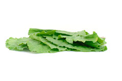 Collard Greens Stock Photos