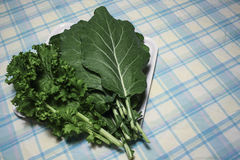 Collard Greens. Image of Some Collard Greens Royalty Free Stock Photo