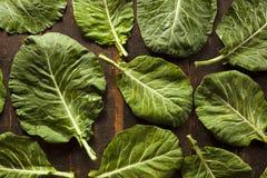 Collard Greens verde organico crudo immagini stock libere da diritti