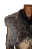 Collare della pelliccia fotografie stock