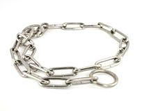 Collare di cane d'acciaio su priorità bassa bianca Immagini Stock Libere da Diritti