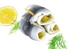 Collared herrings Royalty Free Stock Photos