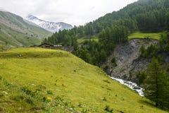 Colle dell'Agnello, Val Varaita. Colle dell'Agnello (Val Varaita, Cuneo, Piedmont, Italy), mountain landscape at summer Stock Images
