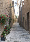 Colle di Val d'Elsa (Tuscany). Colle di Val d'Elsa (Siena, Tuscany, Italy), historic city. Old houses with potted plants and flowers Royalty Free Stock Photos
