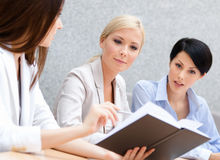 Colleagues discuss business plan Stock Images