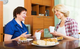 Colleagues drinking tea and talking during pause for lunch Royalty Free Stock Images