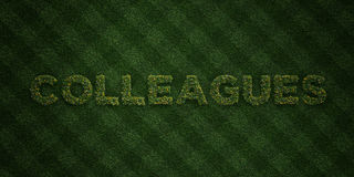 COLLEAGUES - fresh Grass letters with flowers and dandelions - 3D rendered royalty free stock image Royalty Free Stock Photo