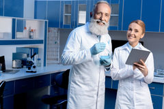 Colleagues in lab coats using digital tablet during work. At laboratory royalty free stock photos