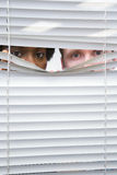 Colleagues looking through blinds Stock Image