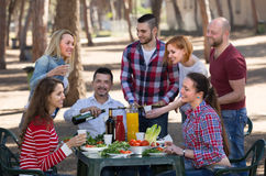 Colleagues making grill at picnic Stock Image