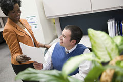 Colleagues in office royalty free stock photos