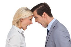 Colleagues quarreling head against head Stock Images