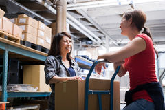 Colleagues in warehouse Stock Images