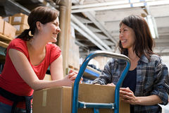 Colleagues in warehouse Royalty Free Stock Photo
