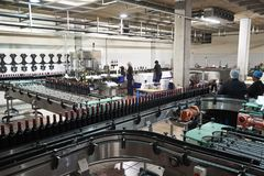 Colleagues working in the bottling plant at a wine factory royalty free stock images