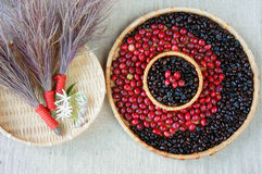 Collect of cofee bean,  ripe berries, black roasted Stock Photos