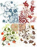 Collect Flower background Stock Images