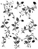 Collect flower border. Element for design, vector illustration Royalty Free Stock Photos