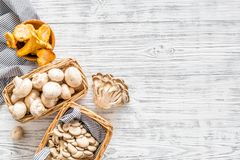 Collect mushroom concept. Champignons, oysters, chanterelles in basket near knife on grey background top view copy space. Collect mushroom concept. Champignons royalty free stock photo