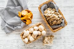 Collect mushroom concept. Champignons, oysters, chanterelles in basket near knife on grey background top view copy space. Collect mushroom concept. Champignons stock image