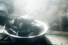 Collect and prepare mussels Royalty Free Stock Photography