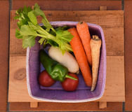 Collect. Sample collect of harvested vegetables royalty free stock photography