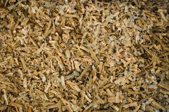 Collect Sawdust photo taken in Bogor Indonesia stock photography
