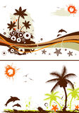 Collect summer design Royalty Free Stock Image
