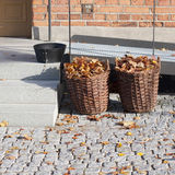 Collecte des feuilles d'automne, Stockholm Image stock
