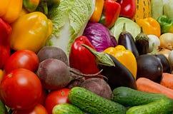 Collecte des légumes photos libres de droits