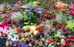 Collected autumn treasures, floristry. Different accessories for autumn decoration Stock Photo