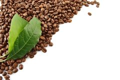 Collected coffee beans in the corner with leaf on white Stock Images
