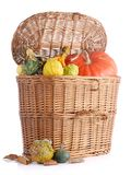 Collectes d'automne photo stock