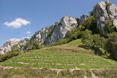 Collectes de céréale à côté de montagne de pierre à chaux images stock