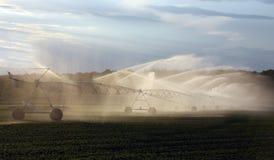 collectes de irrigation de ferme Images libres de droits