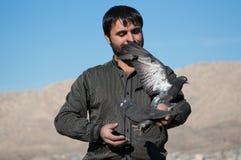 Collecteur de pigeon souriant et tenant les pigeons noirs Image stock