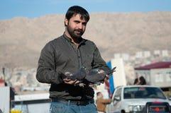 Collecteur de pigeon tenant les pigeons noirs Photo stock