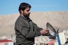 Collecteur de pigeon tenant un pigeon noir Photos libres de droits