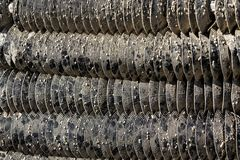 Collecteurs de guêtre d'huître Image libre de droits