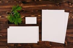 Collectief identiteitsmalplaatje, kantoorbehoeften met groen gebladerte op uitstekende bruine houten raad Spot omhoog voor het br Stock Foto