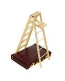 Collectieve ladder Stock Fotografie