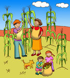 Collecting corn. Family of farmers collecting corn at the field Stock Photo