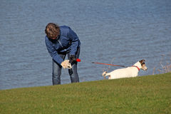 Collecting dog poo Stock Photography
