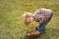 Collecting Eggs Stock Photography