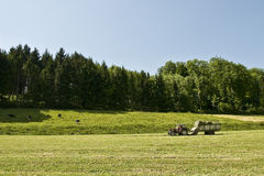 Collecting grass. Tractor collecting cut dried grass in the swiss countryside Royalty Free Stock Images