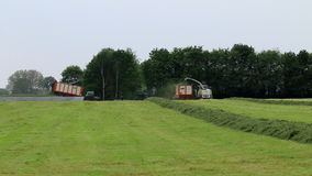 Collecting grass to make grass silage for winterfood Royalty Free Stock Image
