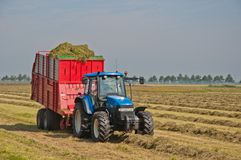 Collecting grass with tractor and silage wagon. Collecting of the rows of hay with the tractor and a silage wagon Royalty Free Stock Photos