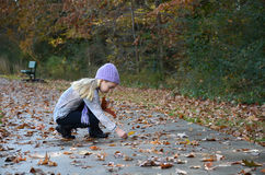 Collecting Leaves Stock Photo