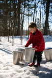 Collecting maple sap. Five year old boy out in a snowy forest in spring collecting maple sap for syrup Stock Photos